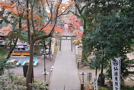 川越 仙波東照宮 階段