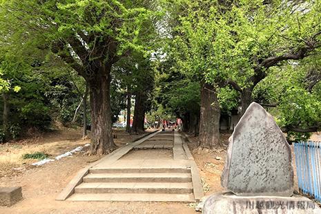 川越 三芳野神社 参道 行き